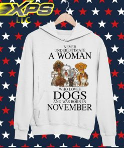 Never underestimate a Woman who loves Dogs and was born in November hoodie